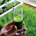 VS-wheatgrass-juice